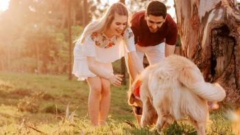Tecnología para perros: gps para perros, cámara para mascotas y otros gadgets para perros que tienes que conocer